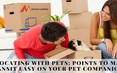 Relocating With Pets: Points To Make Transit Easy On Your Pet Companions